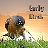 EarlyBirds icon01.jpg