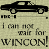 File:Winicon06.png