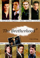 Brotherhood3cover.jpg