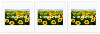 A row of three pictures of a field of sunflowers, with the text 'Example Image' superimposed on each one.
