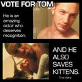 Vote for tom saves kittens by di.jpg