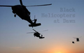 Black Helicopters at Dawn.png