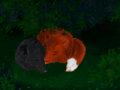 Loki and tony stark as foxes.png
