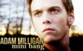 Adam Milligan Mini Bang Banner.png