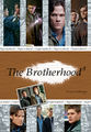 Brotherhood8cover.jpg